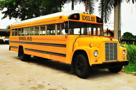 Yellow school bus photo