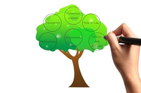 governance: Hand tekening boom van goed bestuur