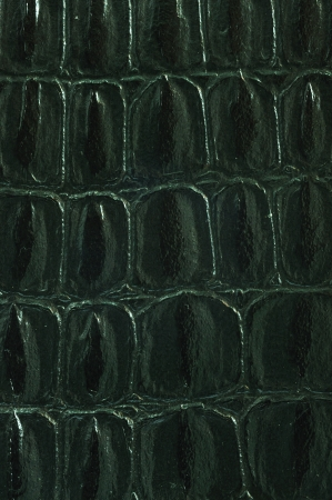 Close up texture of Artificial snake skin or leather for use as background photo