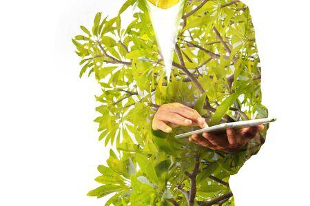 exposicion: Doble exposición de negocios Hombre usando Tablet PC móvil con la planta de hoja verde o árbol