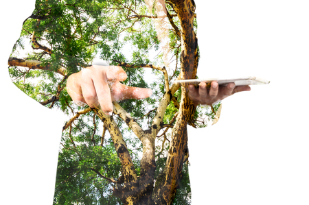 csr: Double Exposure of Businessman with Green Tree Branch Trunk as Eco-friendly or Environmen Conserving Concept.