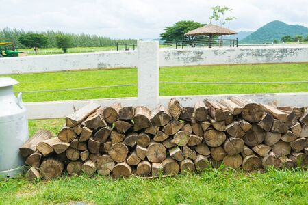 Pile wood, Stack of Chopped Log, Firewood lay on Grass floor Beside Rural Country Farm