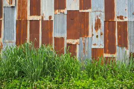 Abandoned Vintage Wall of Metal, Rusty Zinc Galvanized Iron, with Grass and flower as Fence or Barrier