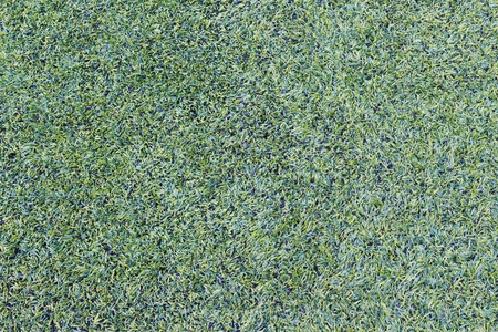 Artificial grass texture photo