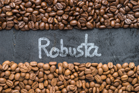 robusta: Coffee beans with Robusta hand writing on black wooden background with blank space.