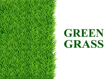 The green grass on the left and the other half is a white background for text input. Vector illustrations