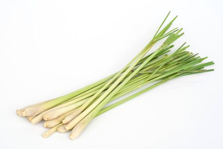 Lemon grass photo