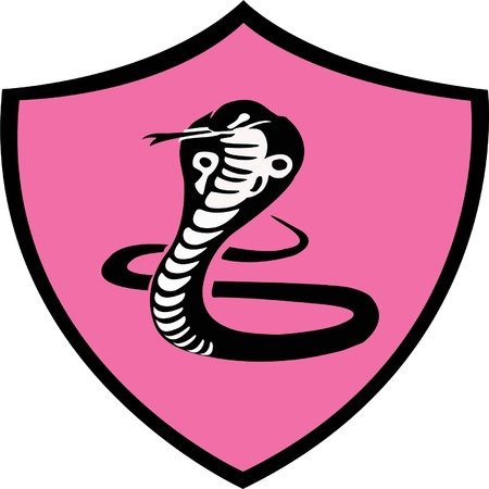 Cobra Dong to create a logo. To show the fight and the insidious. And speed