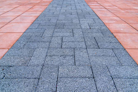 rugged: Pavement, smooth red and rugged blue bricks. Modern design.