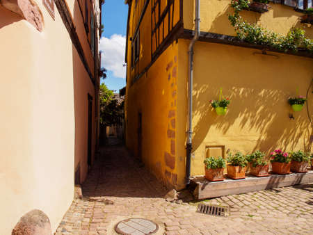 Shaded alleyway between the colorful half-timbered houses of the medieval village of Riquewihr on a sunny afternoon. Haut-Rhin, Alsace wine route, France. Travel and tourism. Stock Photo