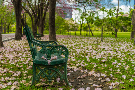 The old green bench in the park.