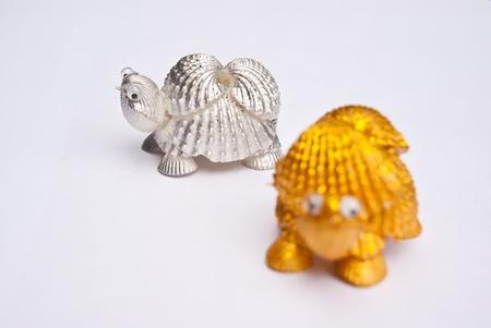 brads: Turtle