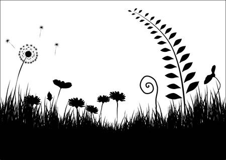 Flower background Stock Vector - 15013771
