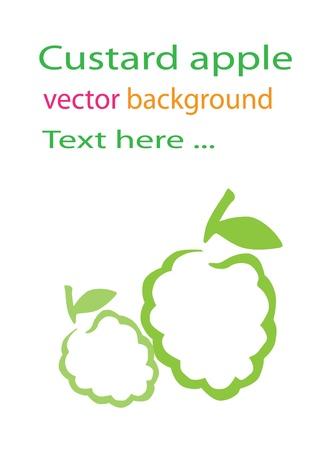 custard apple  background Vector