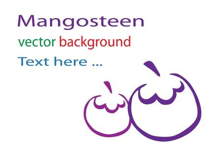 mangosteen background Vector