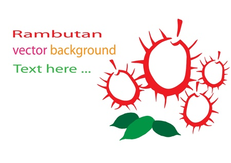 Rambutan background Vector