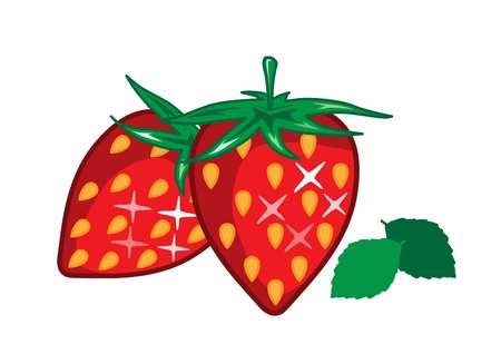 Strawberry Strawberry  Stock Vector - 16077004