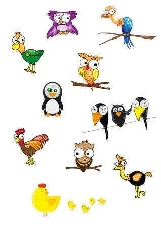 Collection of birds vector
