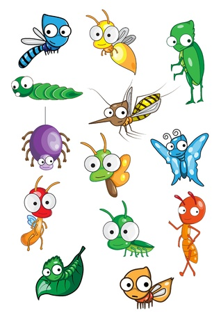 Collection of insect  Vector