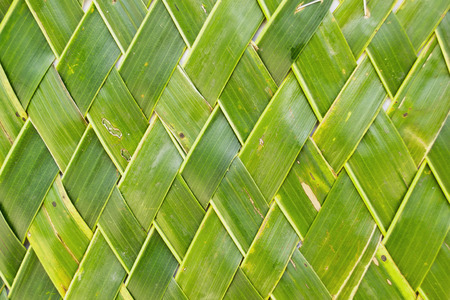 Background of coconut leaf, Thai- style handicraft art with coconut leaf photo