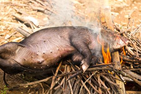 muck: Burning a black dead boar