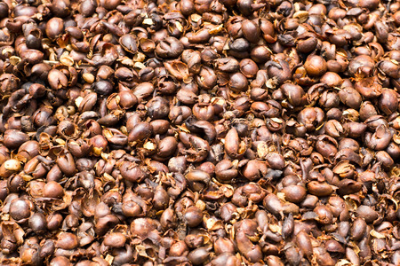 then: coffee beans are then remove the seeds