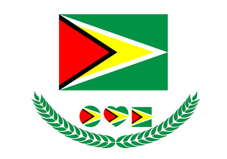 Guyana Flag vector illustration. Guyana Flag. National Flag of guyana on white background
