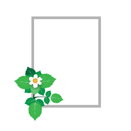 Vector illustration of Beautiful flowers. Frame of beautiful flowers. Design for invitation, wedding or greeting cards