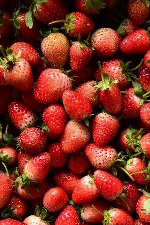 close up of fresh strawberry for background Standard-Bild