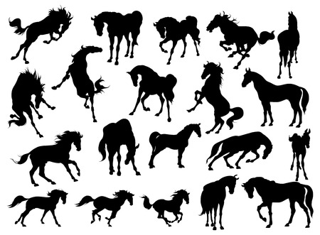 Horse Silhouette Collection - Illustration Vector