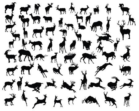 의 deers 컬렉션 실루엣 - 벡터