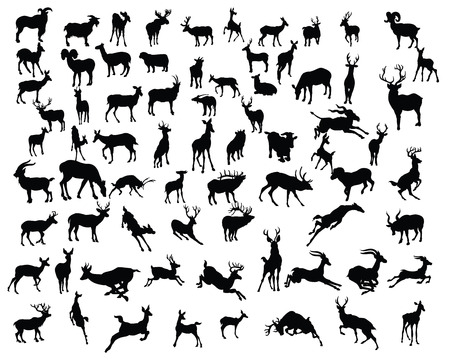 antelope: deers collection silhouettes - vector Illustration