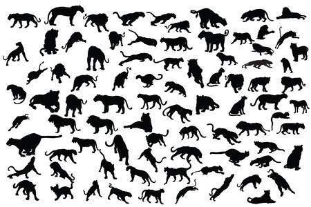 Collection de tigre et lion silhouette Banque d'images - 29267946