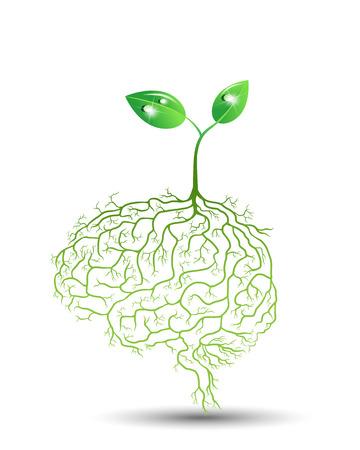 psicologia: Jóvenes de plantas con raíz de cerebro, vector