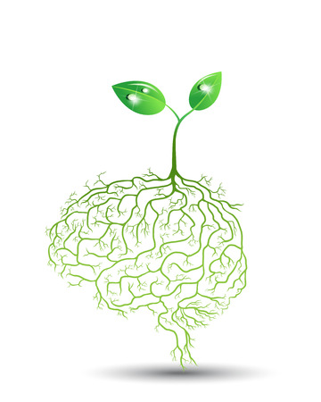 Young plant with brain root, vector Vector