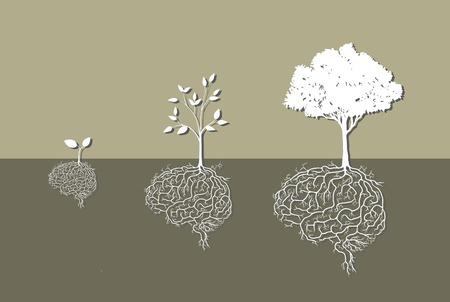 arbol de la sabiduria: J�venes de plantas con ra�z de cerebro, vector