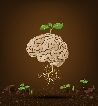 두뇌 나무 그림, 지식의 나무