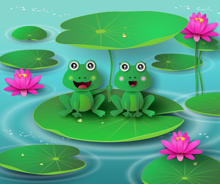 pond: frog in the pond and the blossom lotus.