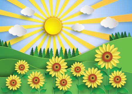 Sunflower field with sunset