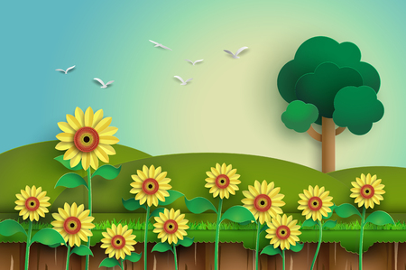 field and sky: Sunflower field with blue sky Illustration