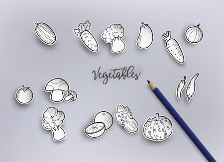 Paper cut and freehand drawing vegetables.