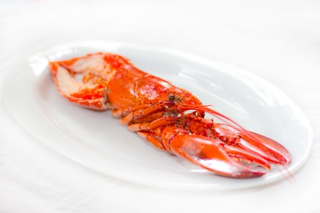 Lobster on white dish Stock Photo - 15496918
