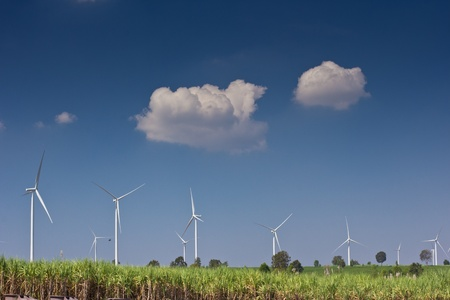 agriculture with wind turbine generator photo