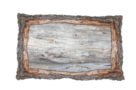 Picture frame wood cross section backgrounds bark and wood texture on white background Standard-Bild