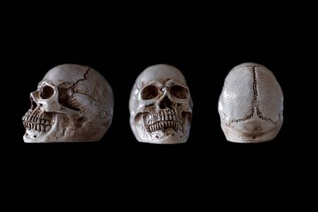 white skull isolated on black background , include of front view, side view and back view