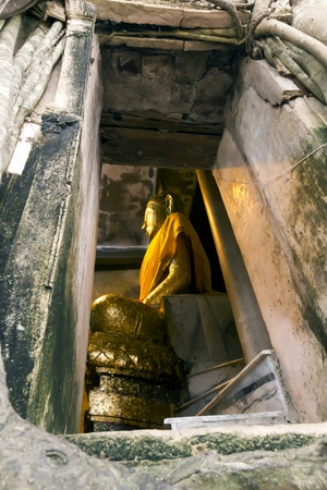 Buddha statue in Church Prok Pho from Wat bangkung.