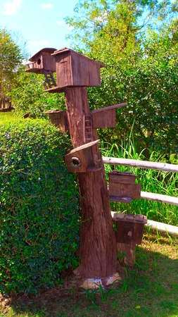 Wooden Bird house on a tree. photo