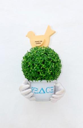 jardineras: Collage con plantas en macetas en la pared