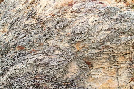 An texture from a close up of coral rock. Stock Photo - 16505566