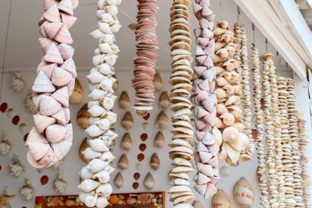 Handicrafts produced by the many types of seashell. photo